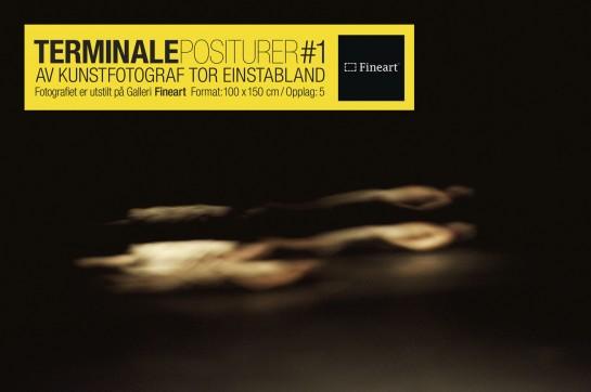 Einstabland_Terminale Positurer#1_Fineart